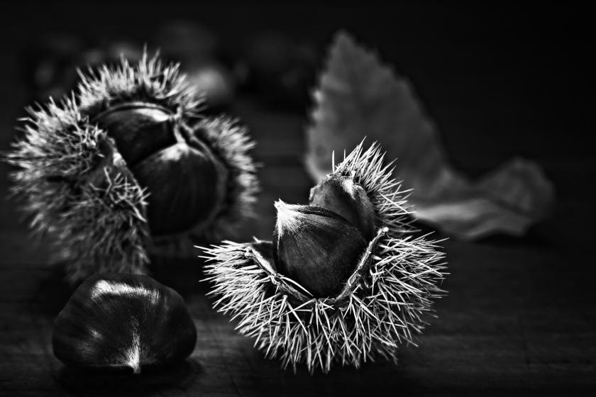 Chestnuts / Castañas (003)