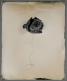 compost-tintype